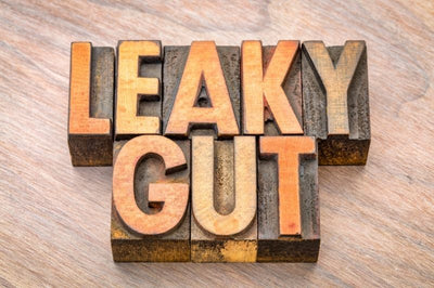 "Understanding ""Leaky Gut"": Separating Myths From Facts"