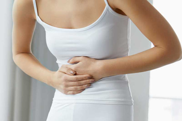 Wellness Makers Guide To Improved Gut Health