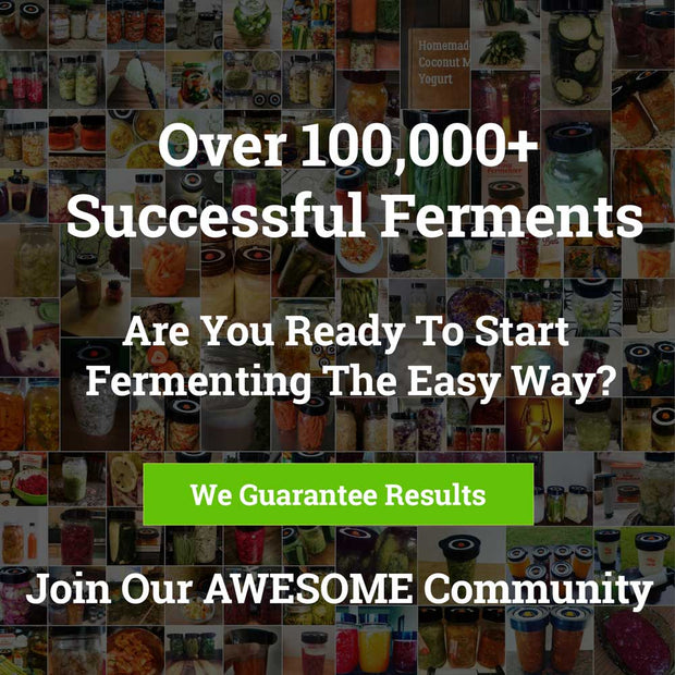 Easy Fermenter And Weights Starter kit