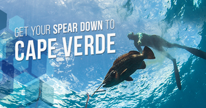 Spearfishing in Cape Verde: Variety in all its Splendor