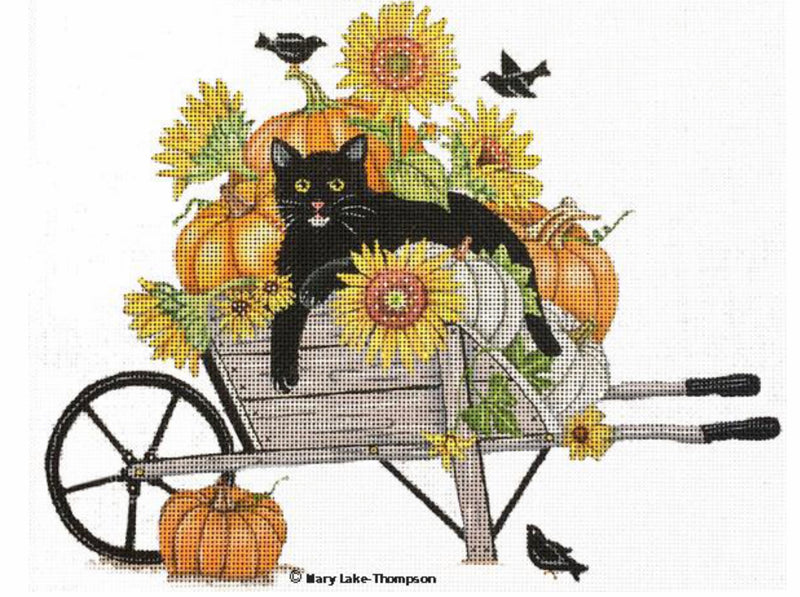 Kitty in Wheelbarrow