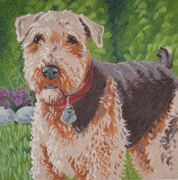 Airedale Terrier LL410