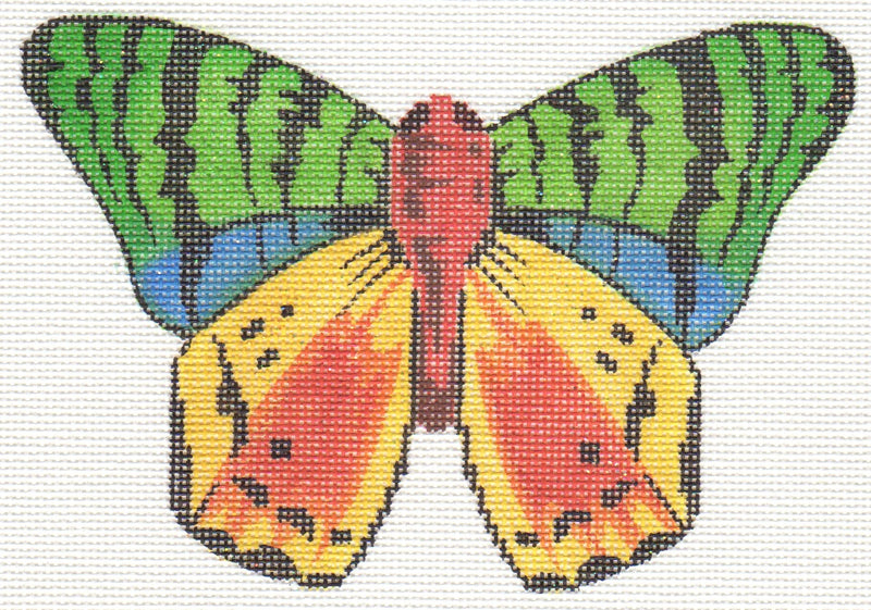 Multi Color Butterfly LL440A
