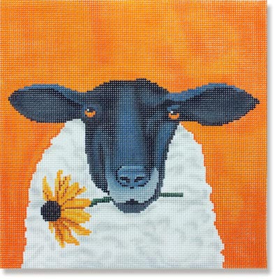 Sheep with Daisy