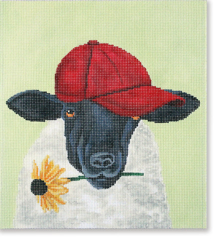 Sheep w/ Red Hat