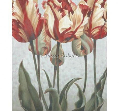 Asiatic Tulips