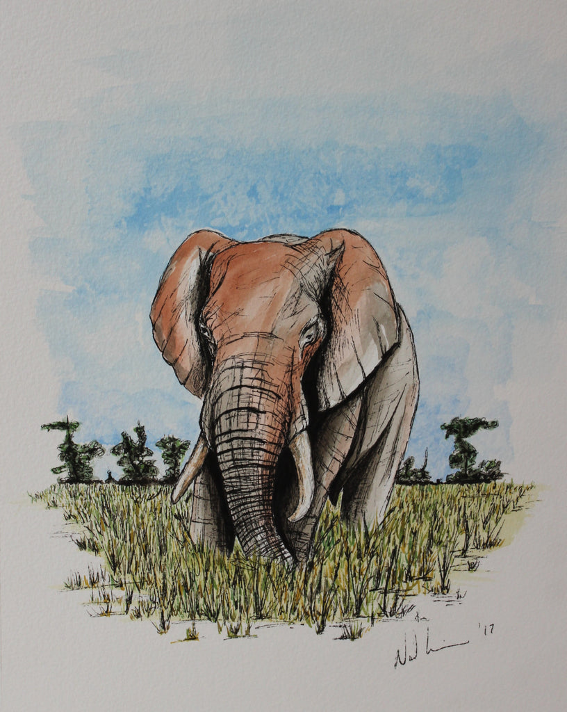 Savannah Elephant. Original Watercolour Pen and Ink