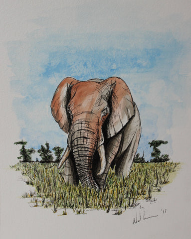 Savannah Elephant. Artist Original Watercolour Pen and Ink. Framed Art
