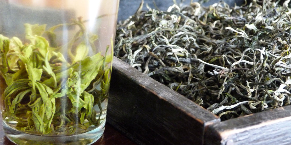 How Yunnan Green Tea is produced: From Garden to Cup