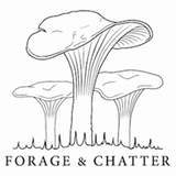 Forage and Chatter