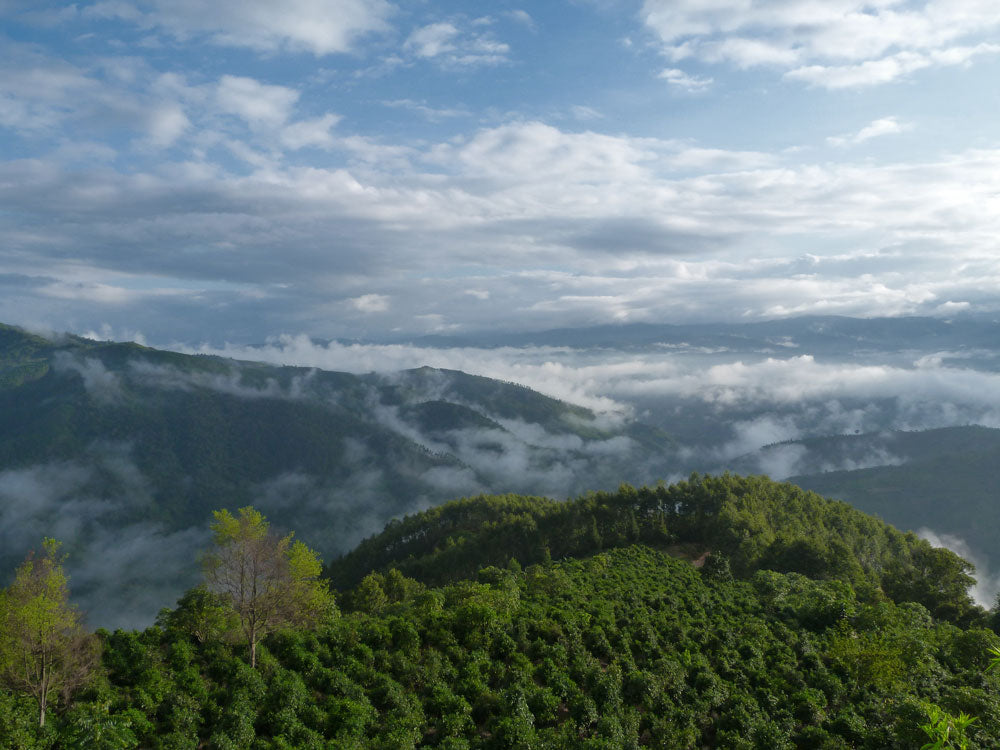 View of the mountains of Yunnan Province from Jingmai Mountain