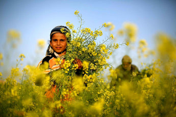 Springtime in Palestine: Flowers, Food and Weather