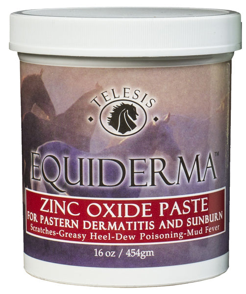 Equiderma ZINC OXIDE PASTE 16 oz - - Barn Supply - Barn Supplies - Hamps Saddle & Tack
