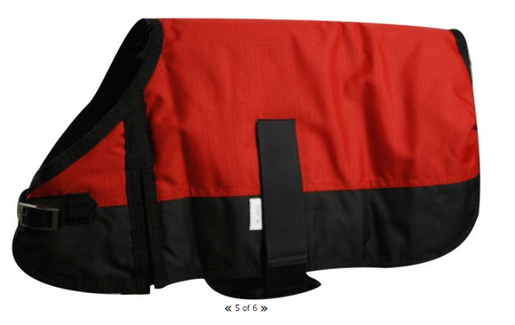 Showman Waterproof Dog blanket