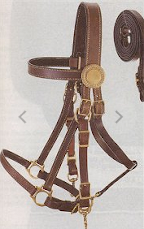 Supreme Leather Halter Bridle Combination