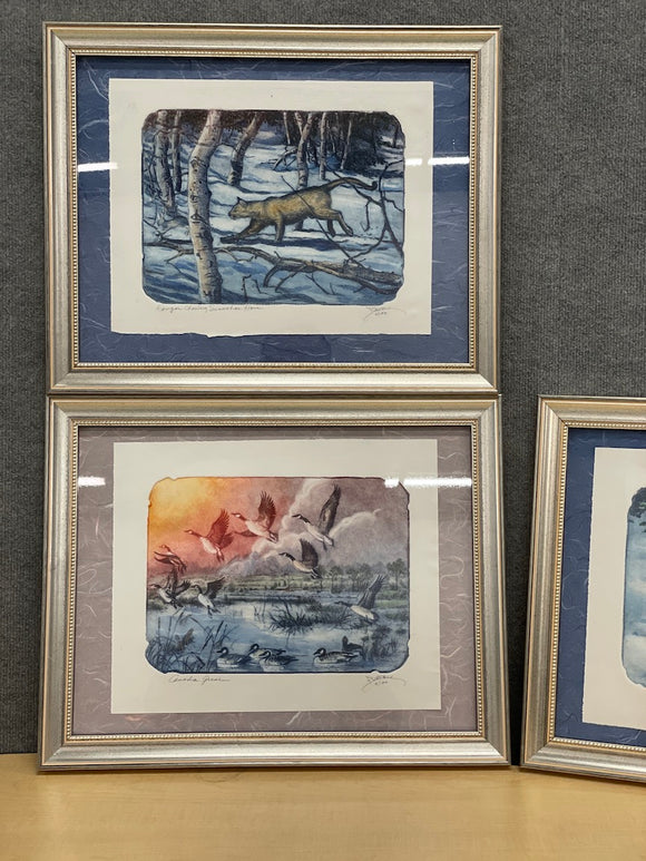 Assorted Framed Art Prints (Limited edition, signed & numbered)