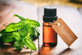 A bottle of peppermint oil labeled as such with a brown paper tag, sat next to peppermint leaves.