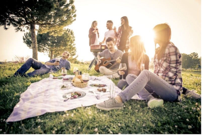 Group sitting on a picnic blanket outside with the sun beaming behind them as one of the group members plays guitar and the rest enjoy wine.