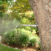 MosquitoNix Custom Misting Systems Control Mosquitos at your home