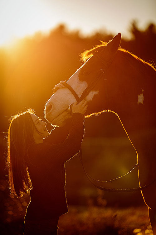 Tracey Buyce Photography - Fine art equestrian photographer