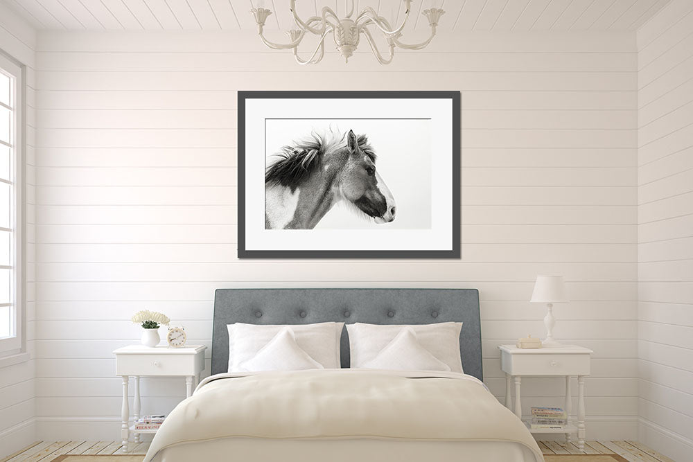 Fine Art Horse Photography Wall Art by Tracey Buyce Photography
