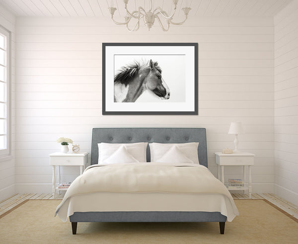 Fine Art Horse Photogrpahy Wall Art by Tracey Buyce Photography