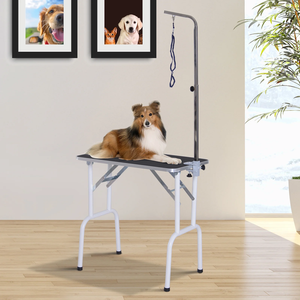 Foldable Pet Grooming Table w/ Adjustable Arm