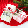 Stamped Christmas Wrapping + Mason Jar Ornaments