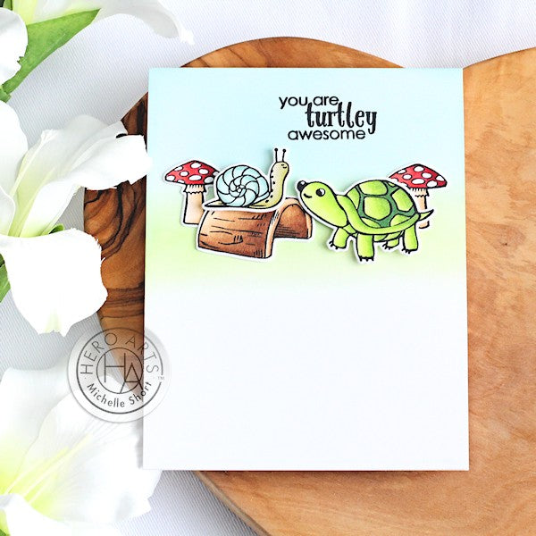 Turtley Awesome by Michelle Short for Hero Arts