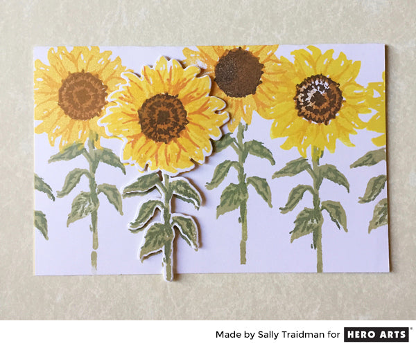 Sunflowers by Sally Traidman for Hero Arts