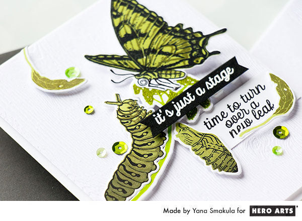 Color Layering Caterpillar Cards by Yana Smakula for Hero Arts