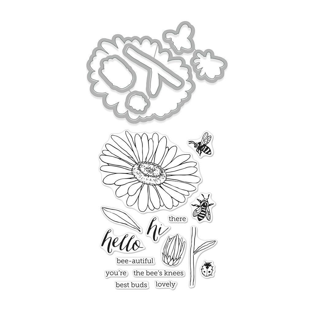 Hero Arts Daisy & Bugs Stamp & Cut