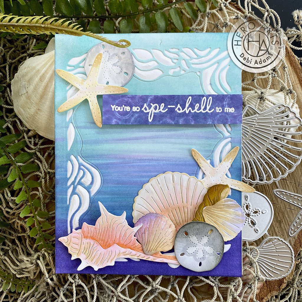DI899 Seashells Fancy Dies (D)