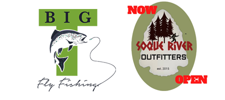 Big T Fly Fishing logo