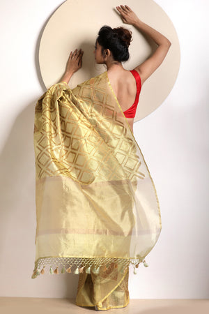 Beige Tissue Saree With Zari