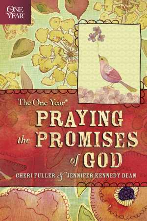 ONE YEAR PRAYING THE PROMISES OF GOD
