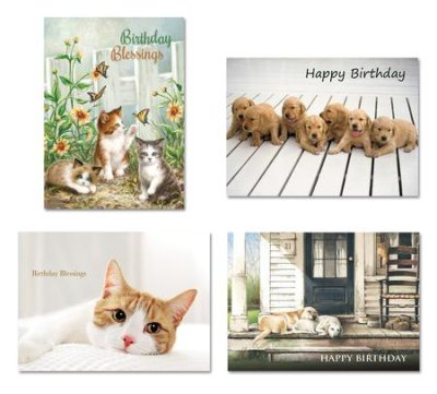 BOXED CARDS - BD - KITTIES & PUPPIES
