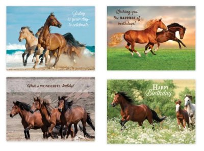 BOXED CARDS - BD - HORSES