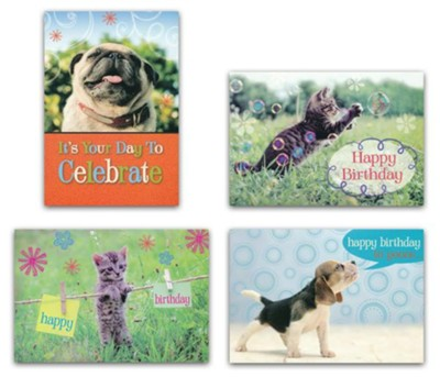 BOXED CARDS - BIRTHDAY - FURRY FRIENDS
