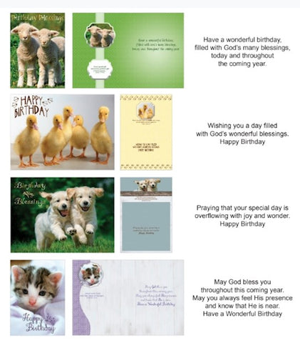 BOXED CARDS - BD - FUR & FEATHERS