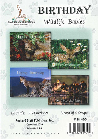 BOXED CARD - BIRTHDAY - WILDLIFE BABIES
