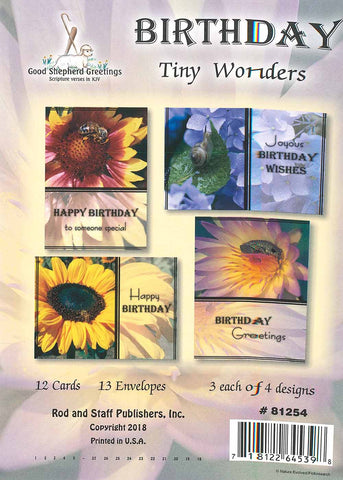BOXED CARD - BIRTHDAY - TINY WONDERS