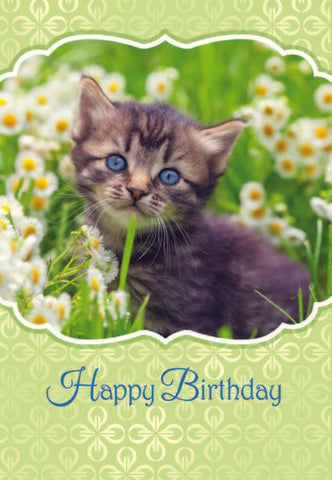 BOXED CARD - BIRTHDAY - FAVORITE FRIENDS