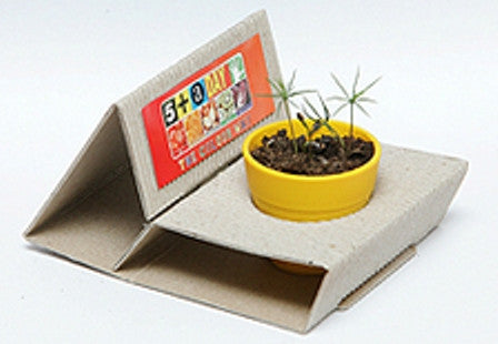 Sprout Box