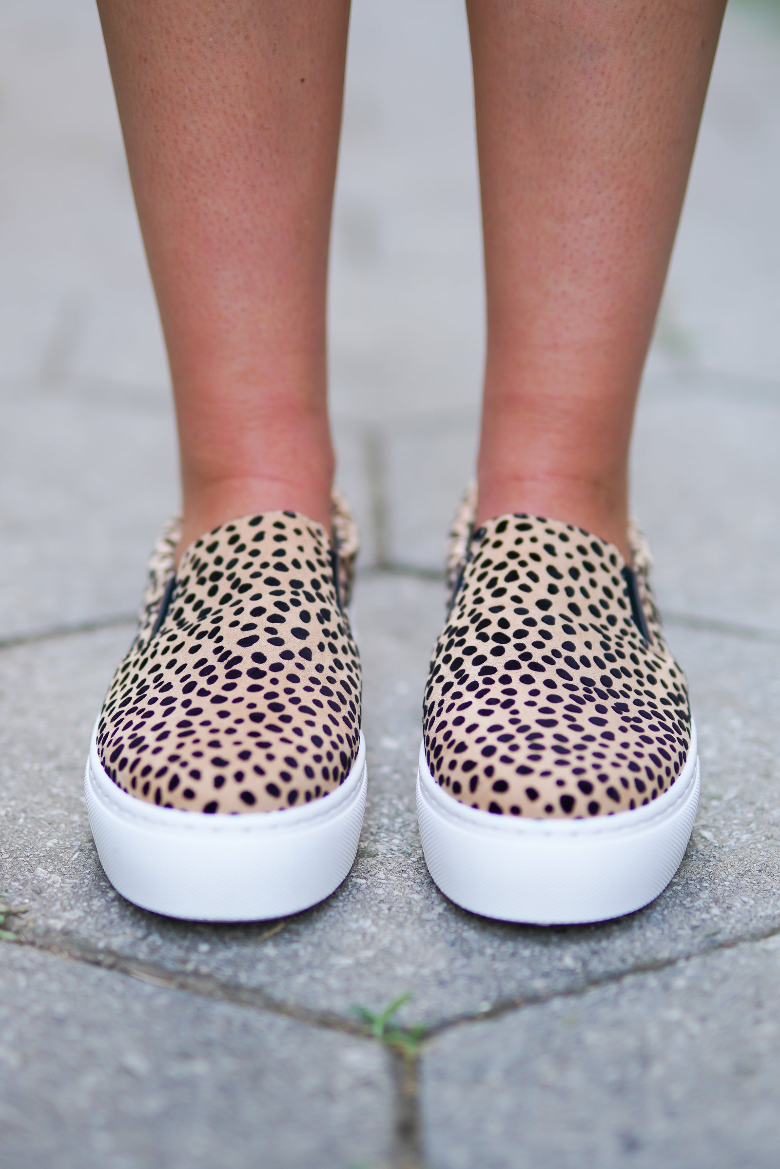 Royal Platforms - Leopard