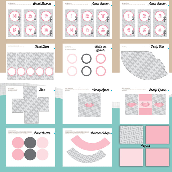 Ballerina Birthday Party Package - AbbyReese Design