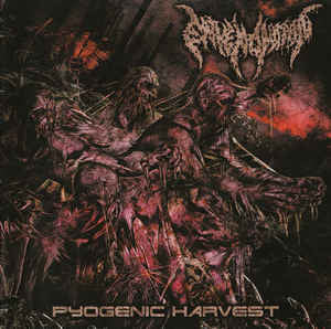ENVENOMATION | Pyogenic Harvest EP CD