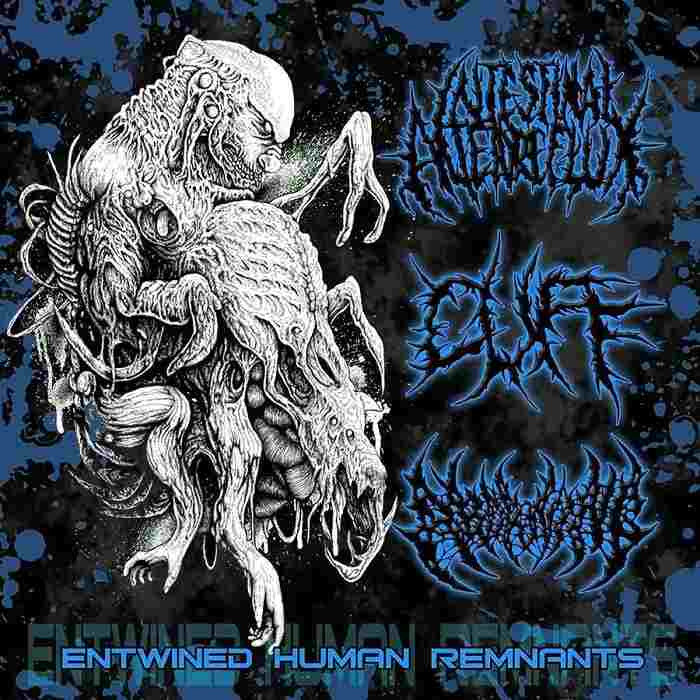 Intestinal Alien Reflux / Cuff (3) / Aborning ‎– Entwined Human Remnants SPLIT CD
