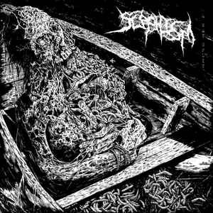Delusional Parasitosis, Ecchymosis, Dissevered, Bleeding (8) ‎– Scaphism 4-Way Split CD