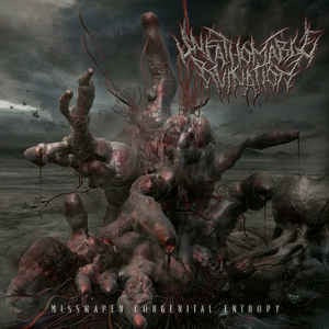 UNFATHOMABLE RUINATION. Misshapen Congenital Entropy. CD
